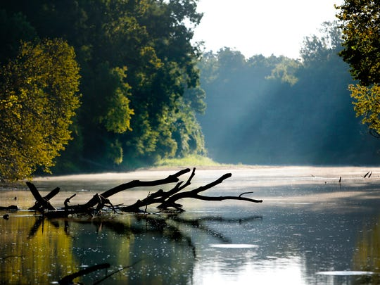 Early morning light and fog drift across the Hatchie River near Fort Pillow, Tennessee.