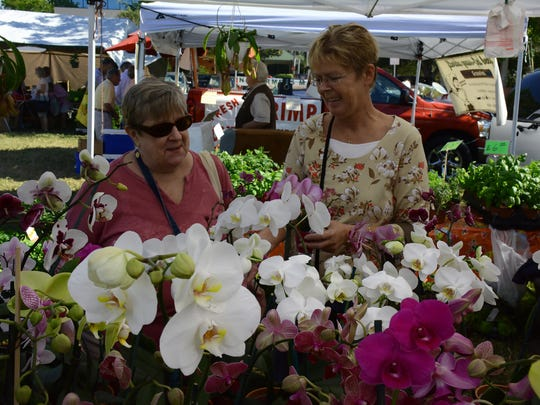 Patty Hunter, left, and Teresa Tendick try to choose from the many orchids available. The Marco Island Farmers' Market opened its 2016-17 season Wednesday morning at Veterans' Community Park.