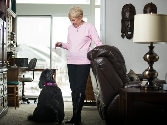 Marge Yonda, 82, and her 10-year-old standard poodle Maggie pose in their Endwell home before leaving for New York City to compete in the 2017 Westminster Dog Show.