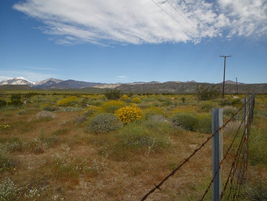A homebuilder has proposed an almost 2,000-unit housing development on a parcel of land in Desert Hot Springs, shown here on Monday, March 20, 2017, that is adjacent to the Sand to Snow National Monument.