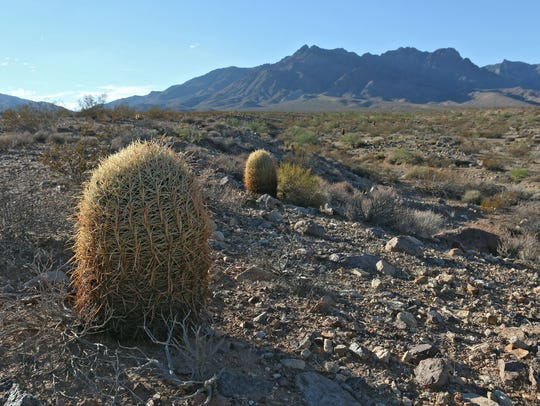 The Mojave National Preserve is near Cadiz's property.