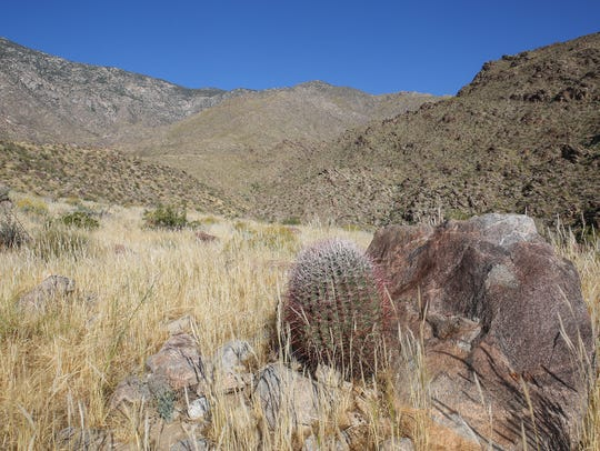 The Oswit Canyon in southwest Palm Springs, April 12,
