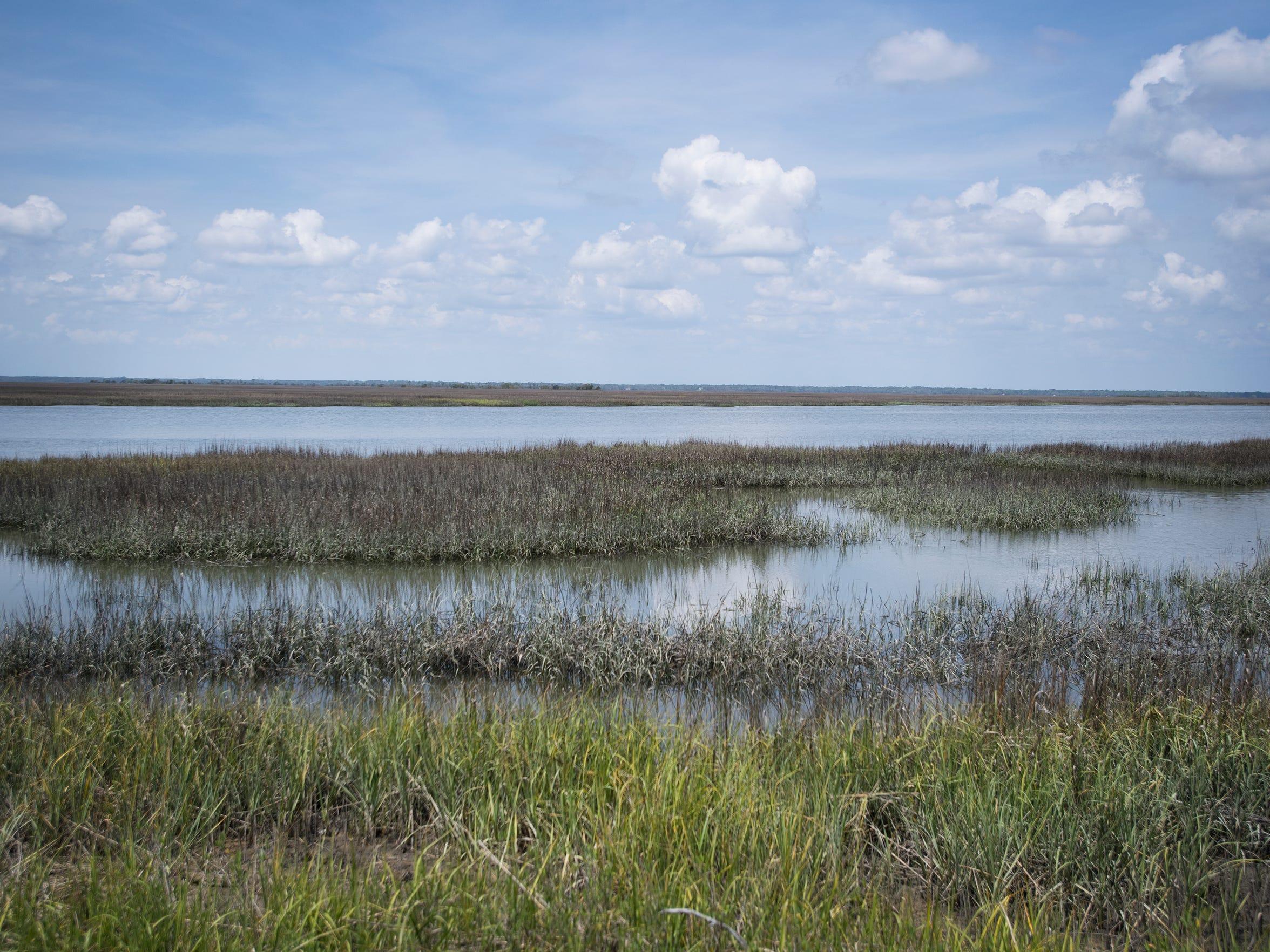 An area of marsh near St. Helena Island on Saturday, April 15, 2017.