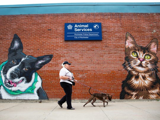 Verona Street Animal Society volunteer walks outside