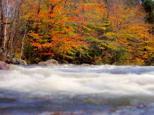 Trees sport colorful foliage as a river flows past North Conway, New Hampshire.