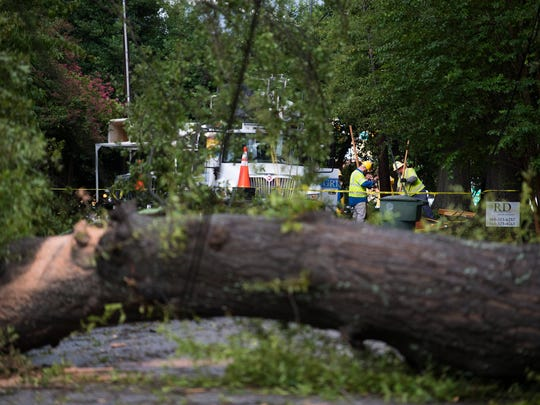 Workers clear a tree and power lines on Crescent Avenue in Greenville following Tropical Storm Irma in September 2017.