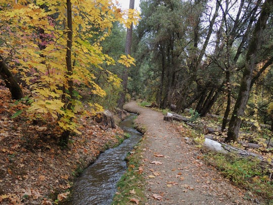 Crystal Creek Ditch was built in the 1850s to bring