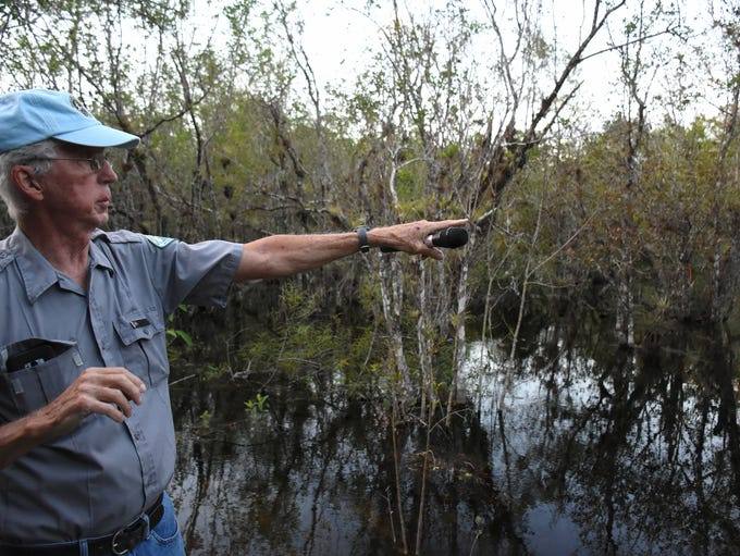Guide Glen Stacell points out native species to the