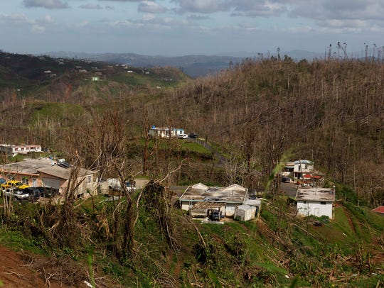The Lopez home is seen behind other damaged properties and in the midst of bare trees on Oct. 14 in Barranquitas, Puerto Rico.
