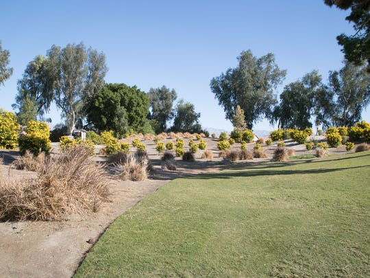 One of the first areas of turf replaced at the Indian Wells Golf Resort was done so using the Coachella Valley Water District's turf rebate, December 5, 2017.
