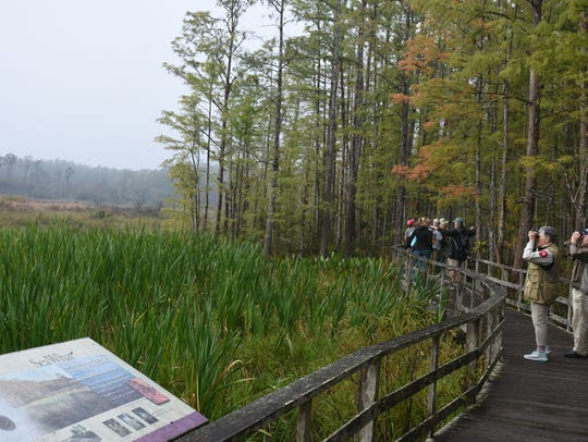 """An """"early bird"""" birdwatching walk is just one of many"""