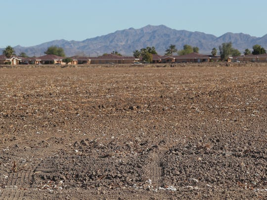 The Palo Verde Center is a proposed cannibis production facility that would be built in this open field in Blythe, California, January 24, 2018.