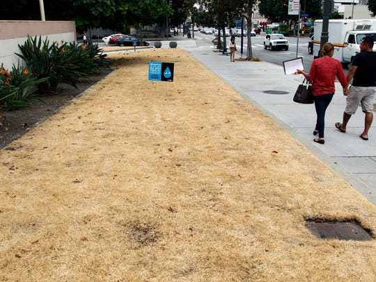 This Sept. 3, 2015, file photo shows a dried-out lawn