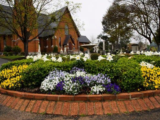Flowers begin to bloom at Christ Church Episcopal on Monday, April 9, 2018. The church's Joyful Garden tour will begin Friday, April 27.