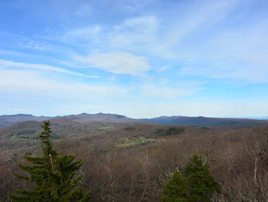 The view from almost to the top of the fire tower is