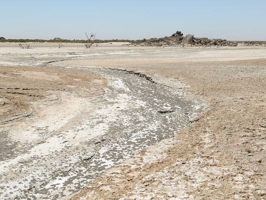 The fast-drying shoreline of the Salton Sea at Obsidian Butte, June 11, 2018.