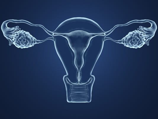 3d rendered illustration of an x-ray of the uterus.