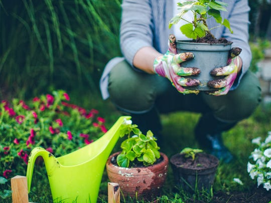 'Grow' some healthy habits by spending time in the
