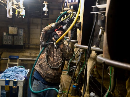 In this May 9, 2018 photo, Chris Torres prepares the dairy barn for the early morning milking at Bryan Matthews farm in Callaway, Va. Despite stubbornly low milk prices forcing some dairy farmers to pinch pennies just to scrape by and others to call it quits and sell off their cattle, Bryan Matthews tries to remain optimistic. Across the country, dairy farmers are struggling to make ends meet. The main culprit: a prolonged period of low milk prices.