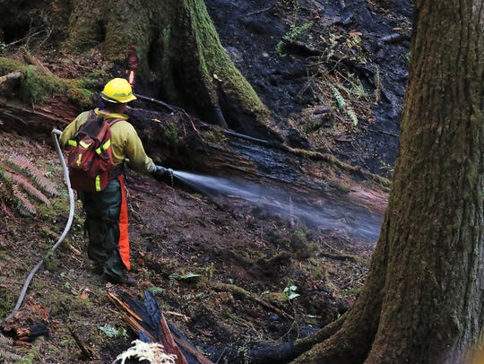 Firefighters battle the blaze at Silver Falls State