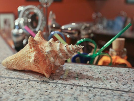 The knobbed whelk or conch was made the state shell in 1995.