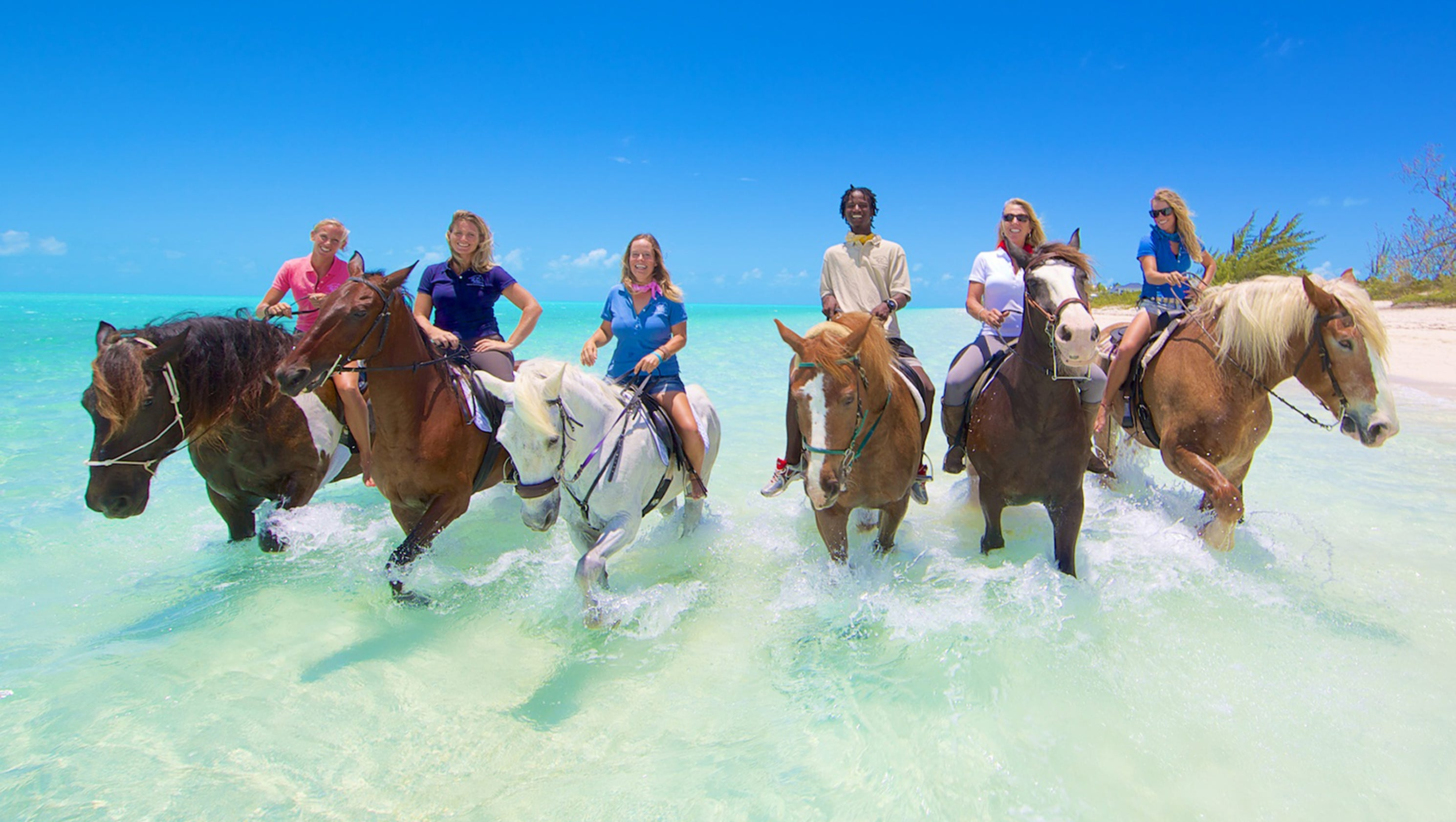 Long Beach Island Horseback Riding