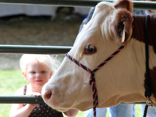Somerset County 4-H Fair returns Aug. 9 to 11 to North Branch Park, Bridgewater.
