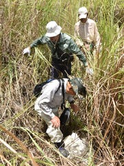 Kazuo Hoshi and members of the Japan Association for Recovery and Repatriation of War Casualties observe a metal object found during a hike through the Asan hillside on July 12. National Park Service Resource Manager Mike Gawel speculates that the object could be from World War II, but if it were the object would probably be covered with more sediment.