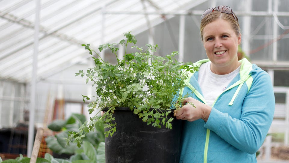Colleen Owen, an urban gardener, grows parsley and