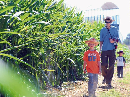 Abraham Miller, 5, front, his father Mark and his brother Samuel, 4, visit the Mesilla Valley Maze this week on a home-school field trip. Opening weekend is Sept. 26-27 at the Lyles Family Fun Farm, 3855 W. Picacho Ave. The maze operates until Oct. 25.