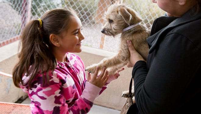 "Aralis Chacon, right, holds up a terrier for daughter Zaharie Chavez, 8, to examine Thursday at the Animal Service Center of the Mesilla Valley. The center was running a ""Home for the Holidays"" promotion, a free pet adoption event sponsored by the Doña Ana County Humane Society. The society covered the cost of adoptions on Christmas Eve with the goal of getting as many pets out of the shelter by Christmas. Zaharie decided to adopt the dog and planned on naming him Buddy."