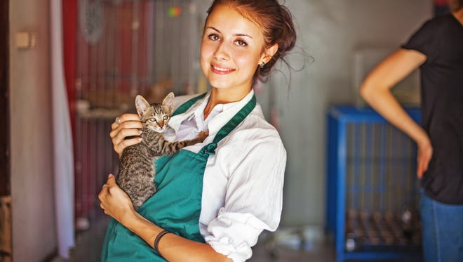 A young woman holds a cat in a pet shelter.