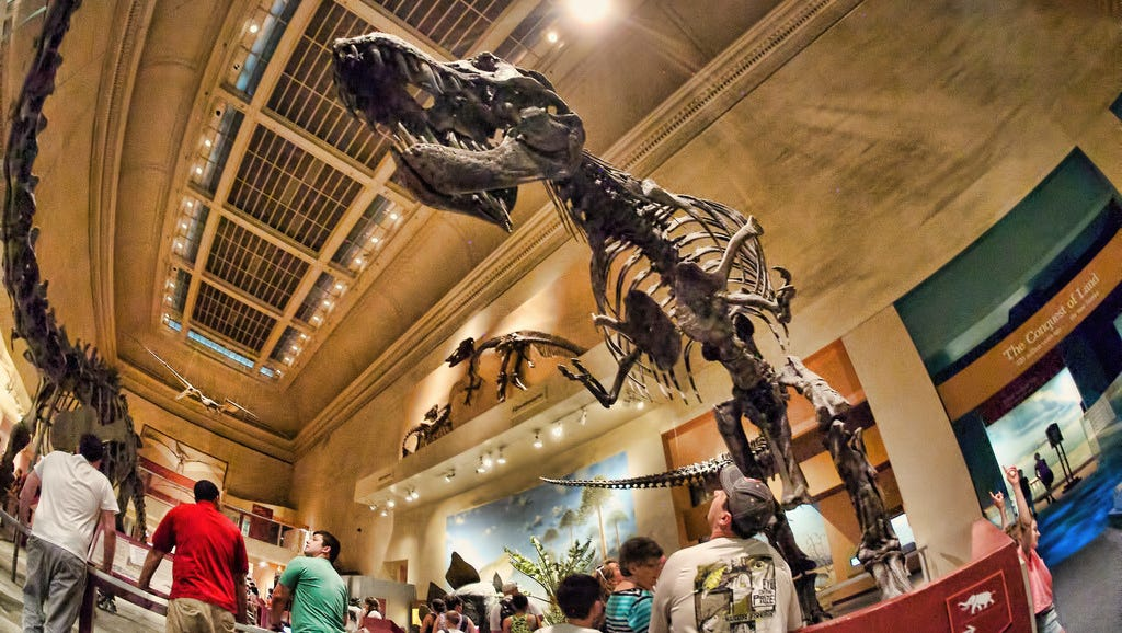 Smithsonian Museum of Natural History, Washington, D.C.: You can't mention great dinosaur museums without mentioning this one. The main hall may be dominated by a giant elephant, but you won't find the museum lacking in dinosaur exhibits. This is the most popular museum in D.C. for families, so get there early to avoid crowds.
