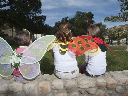 ButterflyCostumes-89076220