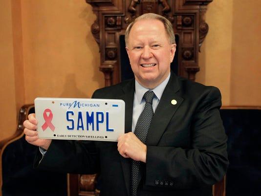 wsd pink plate.jpg
