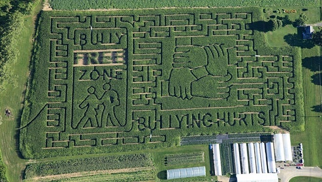 An aerial view of the 8-acre corn maze at the Stoughton Farm in Newark Valley, which opens to visitors Saturday.