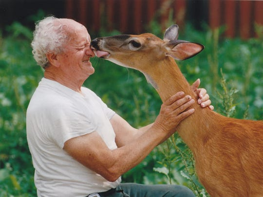 The Rev. Roberto Balducelli is nuzzled by Carina, a deer he raised at St. Anthony's in the Hills, in June 1993.