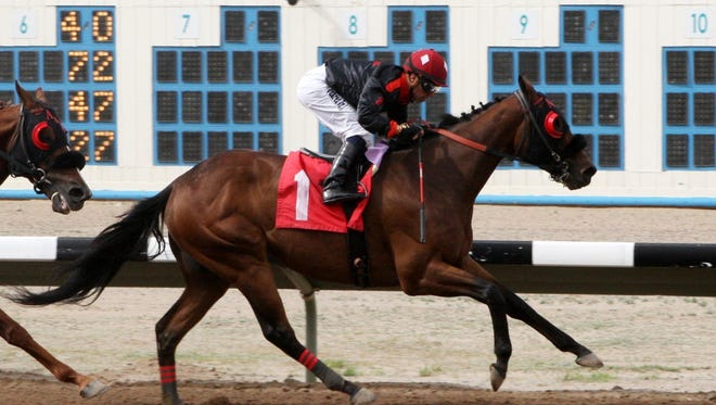 Redneck Humor crosses the wire in front in the Inaugural Handicap at SunRay Park and Casino on April 23. The Justin Evans-trainee is the morning-line favorite in Monday's $30,000 SunRay Park and Casino Handicap in Farmington.
