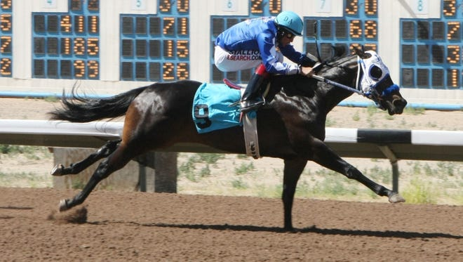 A Fancy La Jolla, ridden by Daniel Amaya, pulls clear down the SunRay Park and Casino stretch on her way to a mild upset in Sunday's $81,459 Four Corners Futurity in Farmington.