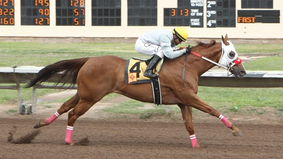 Klassic Strawfly and jockey Isaias Cardenas finish in the clear, more than a length in front of their competition in the inaugural running of the $100,000 First Moonflash Maturity at the Downs at Albuquerque.