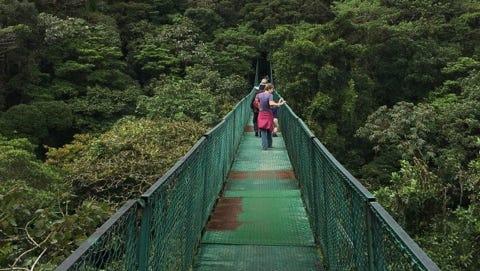 One of eight hanging bridges in Monteverde, Costa Rica. Photo taken on Feb. 21, 2016.