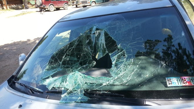 Some of the damage caused to a Toyota Camry after a black bear broke into the car and became trapped, near Red Lodge is shown.