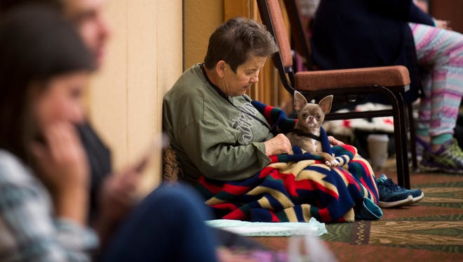 Pet owners comfort their pets at the Leconte Center shelter in Pigeon Forge on Monday, Nov. 28, 2016.