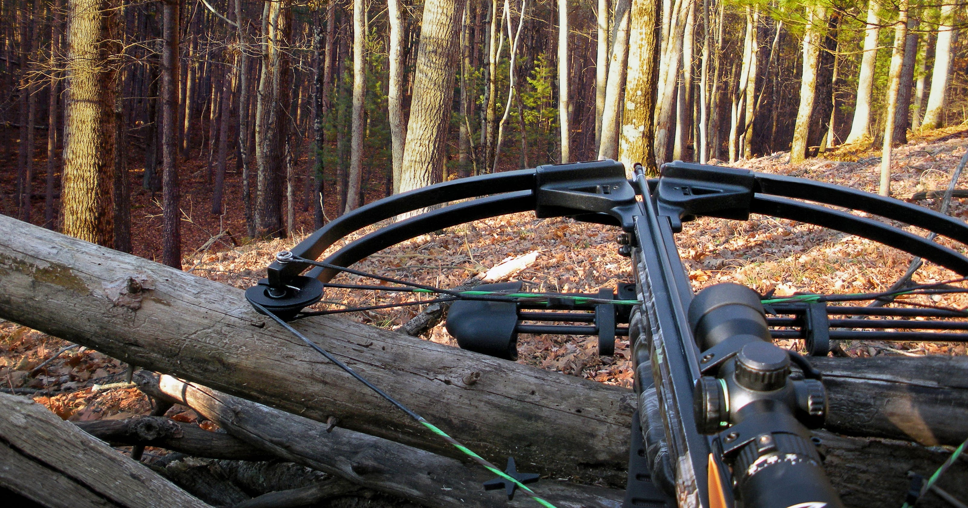 NY's crossbow season: Rules you need to know