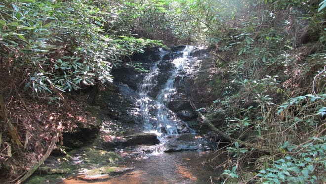 The 2,207-acre Simms Hill Tract, now permanently protected through the work of the Foothills Conservancy, includes a 757-acre addition to South Mountains State Park near Morganton.