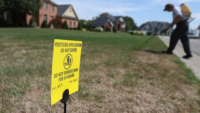 Lois Dannenberg, an integrated pest management specialist with Broccolo Tree & Lawn Care, uses three different types of pesticides to kill weeds in a residential yard in Webster.