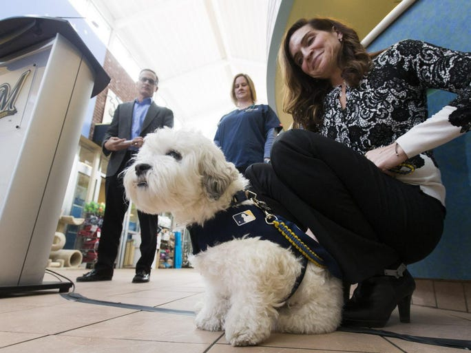 Hank, the former stray dog that became a mascot for the Milwaukee Brewers appears with his owner, team general counsel Marti Wronski, at a news conference at the Wisconsin Humane Society.