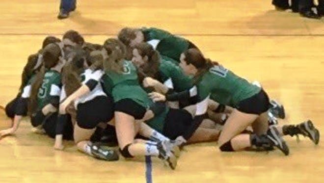 Novi players go wild after winning the state Class A championship Saturday in Battle Creek.