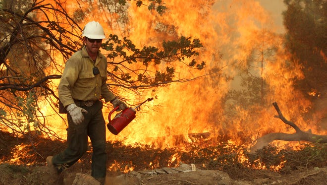 A member of the BLM Silver State Hotshot crew uses a drip torch to set back fires on the southern flank of the Rim Fire on Pilot Peak, Calif.