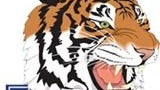 TSU Tigers